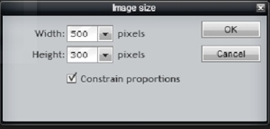 Make sure Constrain proportions is checked.