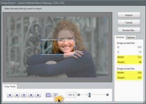The Image Import window shows the selected area (top) and original photo dimensions (bottom).