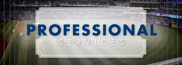 baseball professional services