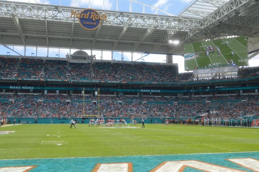 MiamiDolphins_Endzone_04