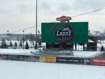 Photo courtesy: Great Lakes Loons
